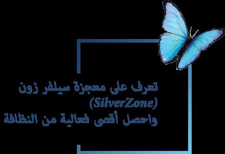 meet-the-silverzone-AR